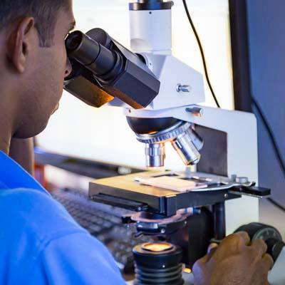 Fish Lab, microscope, Landaa Giraavaru, Maldives