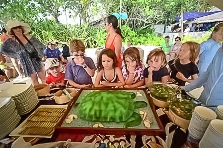 Turtle Day Celebrations - Cake