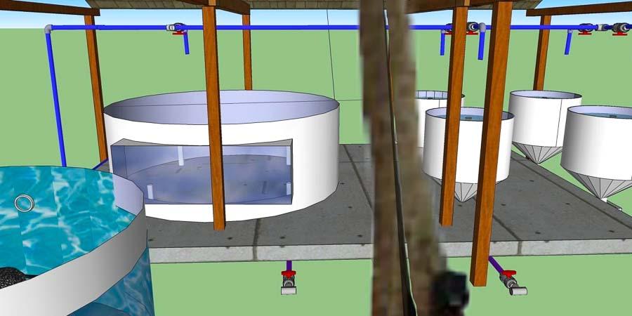 Turtle rehabilitation centre, expansion plans - 2 new pools