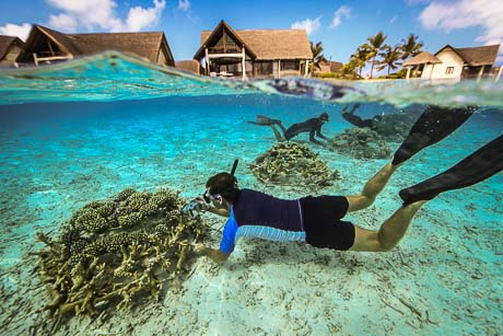 Coral Frame maintenance - Reefscapers at Kuda Huraa, Maldives (c) George Steinmetz