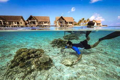 Coral Frame maintenance - Thomas le Berre at Kuda Huraa, Maldives (c) George Steinmetz