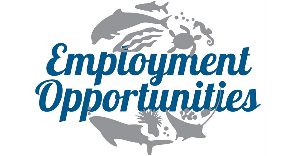 Employment Opportunities at Marine Savers, Maldives