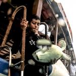 Jaz - Head Start Green Turtle - released from boat by Farhan