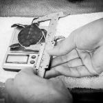 Head start turtle hatchling - measuring, Kuda Huraa