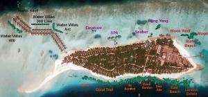 coral frames, Landaa Giraavaru (Jan-15) (Reefscapers Coral Frame Updates)