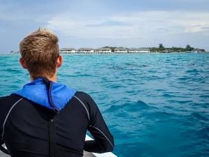 Dolphins close to Kuda Huraa (Cath's Blog – Chapter 2)