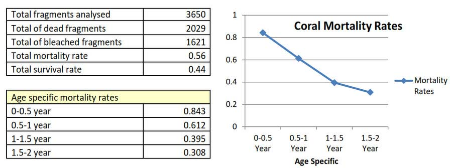 Coral Mortality Rates