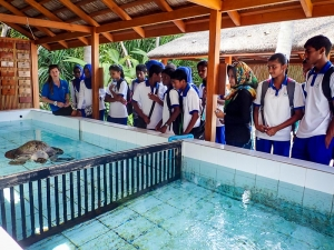 Kamadhoo School visits Marine Savers - turtle rehab pools