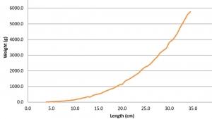 marine-savers-growth-chart-for-maisy (Maisy)
