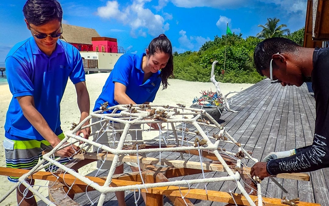 Volunteering in the Maldives with Marine Savers