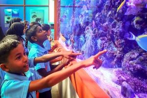 Maalhos School visit to our Marine Discovery Centre (Marine Life – Aquarium and Ocean)