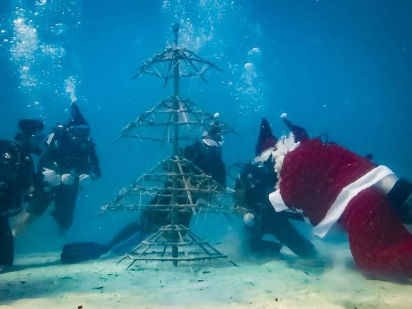Emily – marine biology intern, Seamarc Maldives (6)