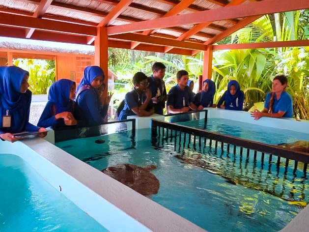 Marine Savers Maldives - Ungoofaaru school visit