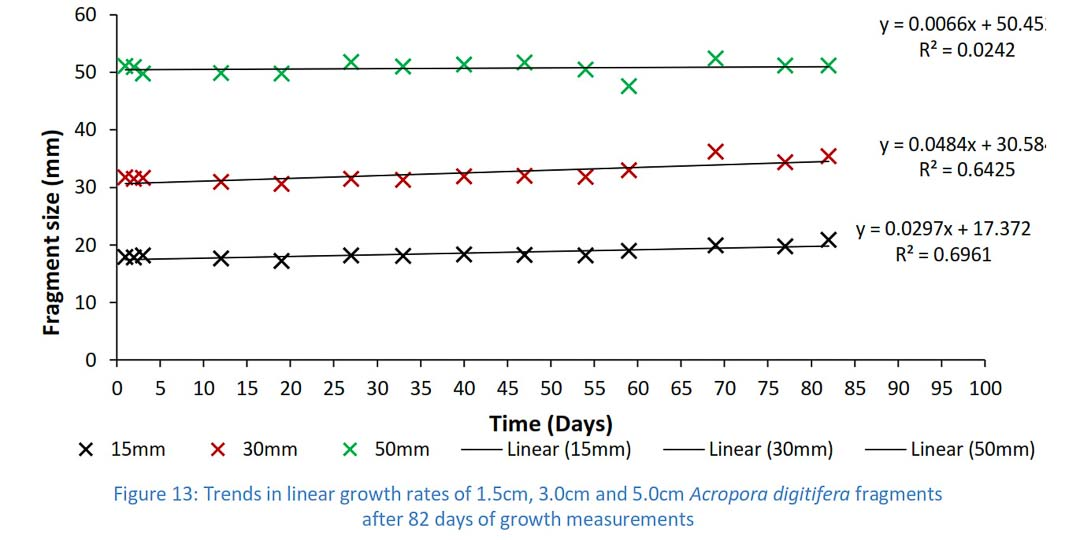 Reefscapers - trends in linear growth rates, Acropora digitifera coral fragments