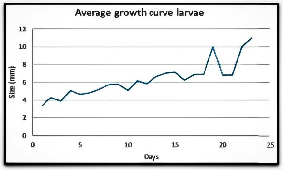 Fish Lab - Clownfish larvae growth curve