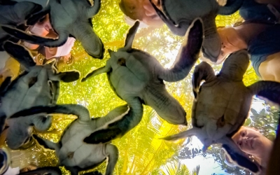 Marine Discovery Centre News