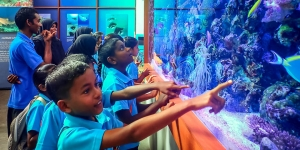 Marine aquarium – Maalhos school visit (Refurbishment of our Large Marine Aquarium)