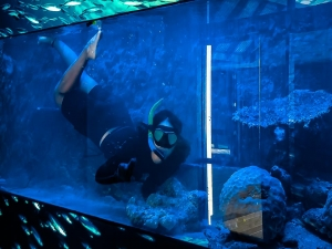Marine Savers Maldives aquarium renovation