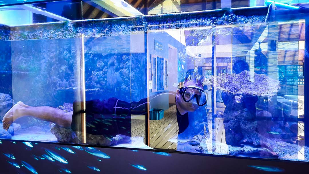 Marine Savers Maldives aquarium renovation