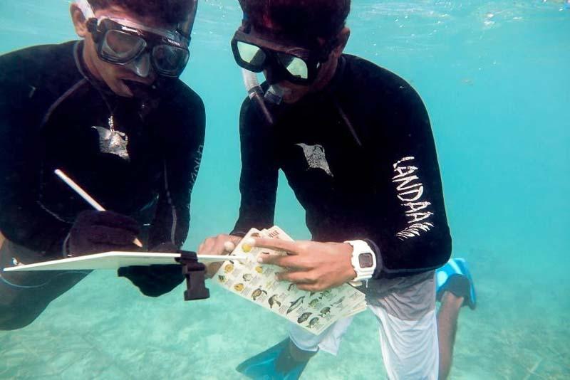 Apprenticeship programme, Four Seasons Resorts, Marine Savers Maldives (7) [LG 2017.07]