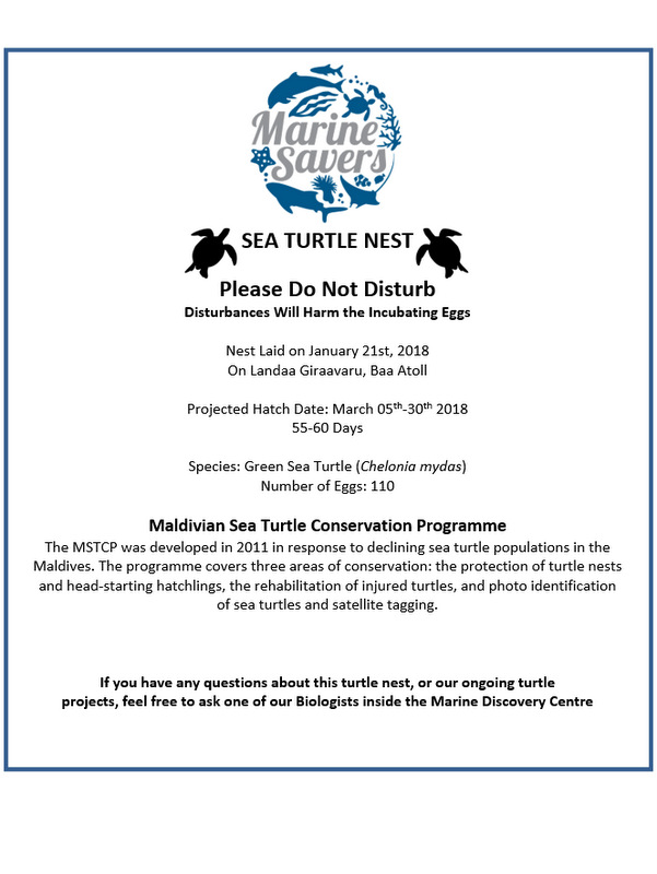 Green sea turtle nest sign Marine Savers Maldives