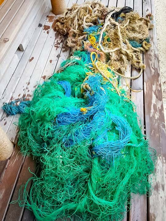 Ghost fishing net that had entangled 'Mitte' (Olive Ridley turtle)