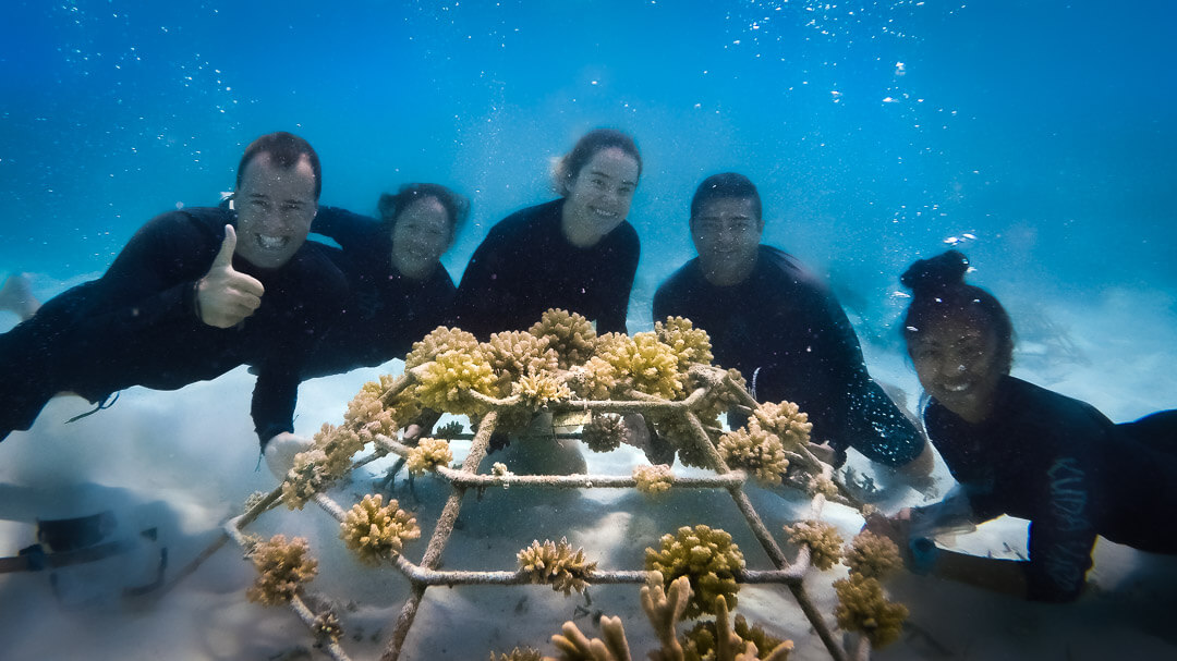 Marine Savers team at Kuda Huraa Maldives with Reefscapers coral frame-2