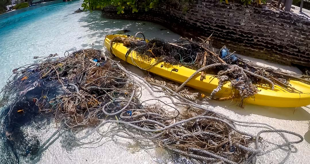 Ghost net (discarded fishing gear) with entangled turtle Coral