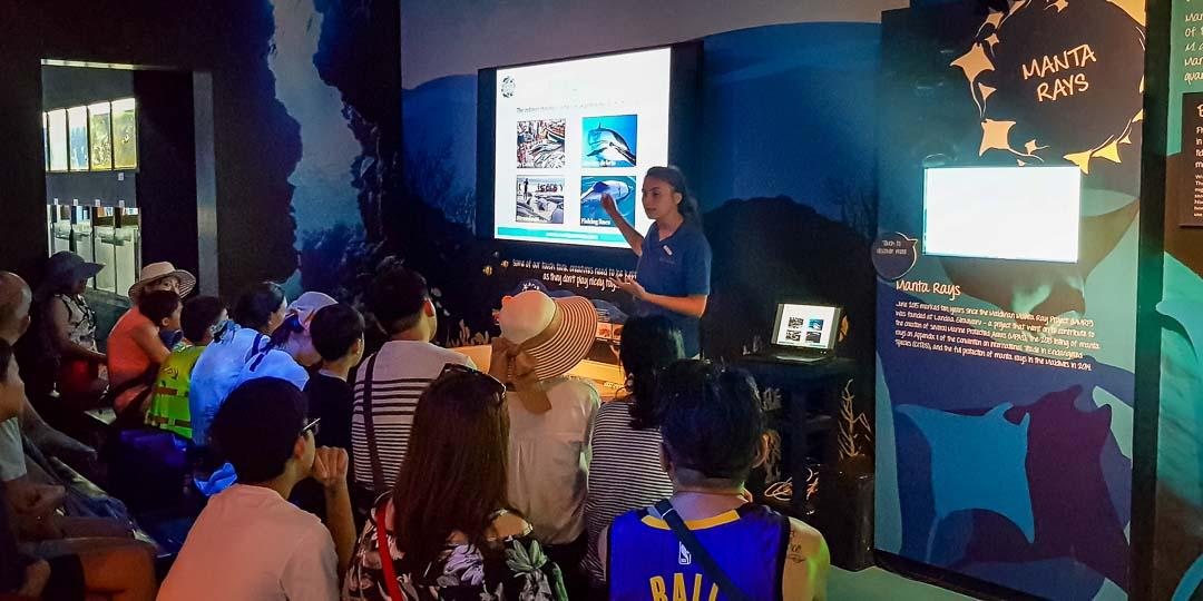Olivia - marine internship Reefscapers Maldives (5) awareness [1080]