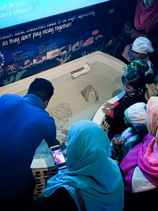 School visit to Marine Savers by Kudarikilu - touch tank
