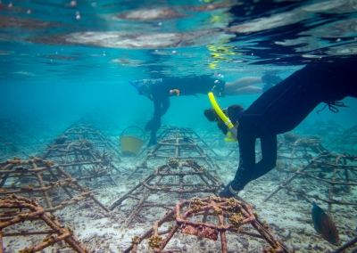 Maldives Marine Biologist volunteers Sorin & Martyna