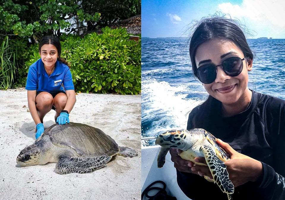 Maanee's Marine Biology Blog