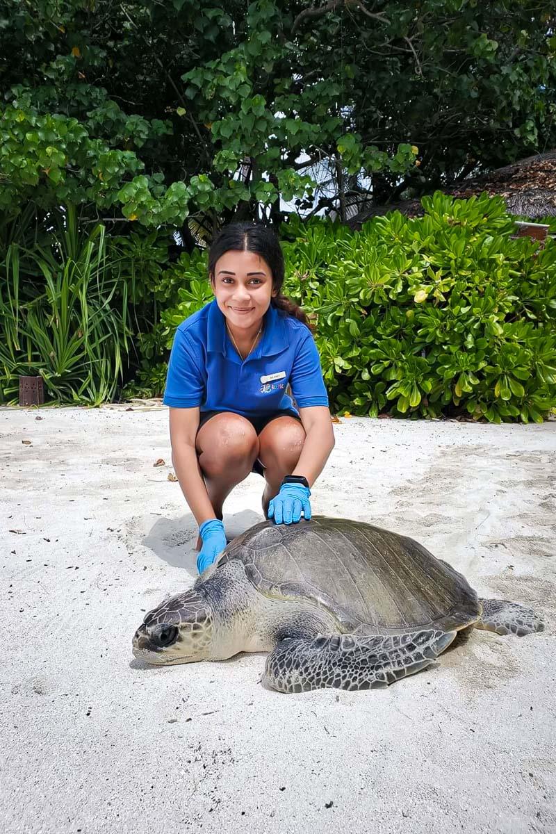 Maanee turtle conservation internship Maldives (3) Jahura