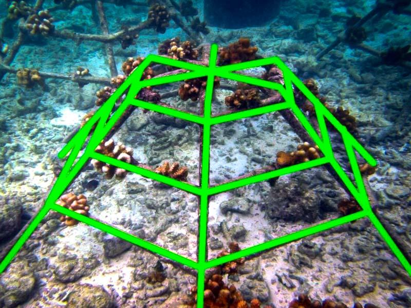 Reef monitoring catamaran AI frame detection