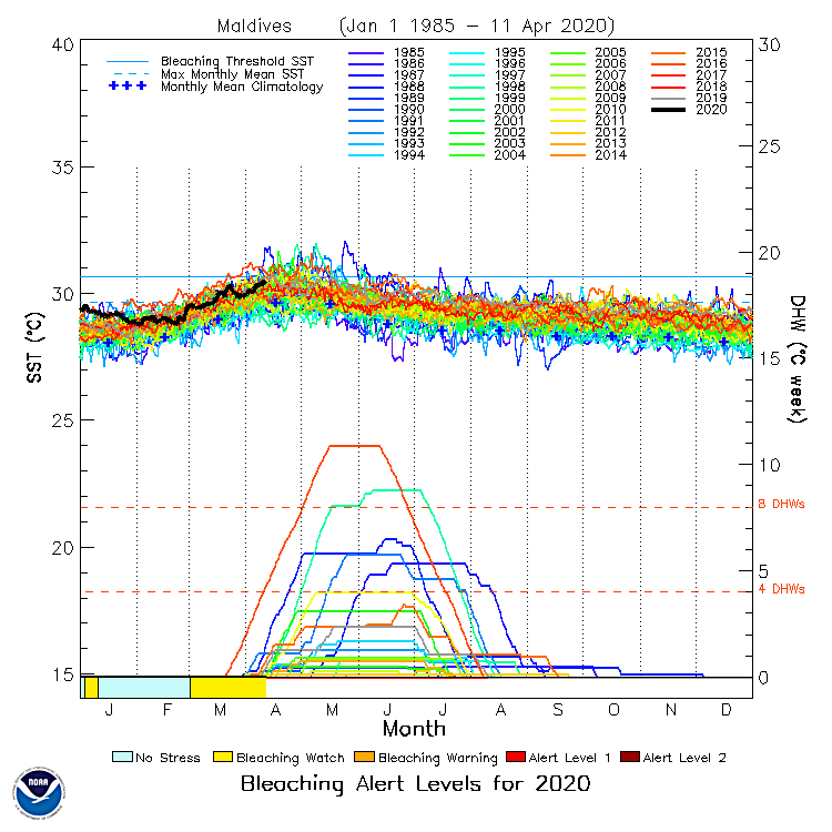 NOAA Bleaching Alert Levels Maldives 2020