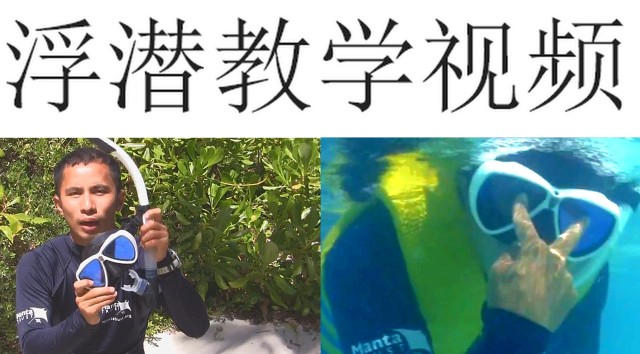 How to Snorkel Training Video - Chinese language