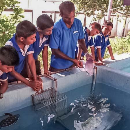 School visit (turtle feeding)
