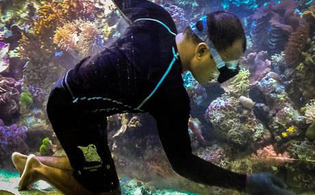 Cleaning our Marine Aquarium this month