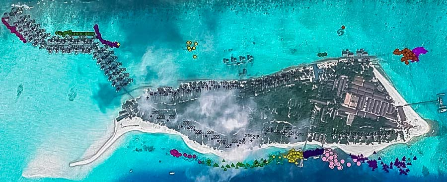 Locations of our coral frames at Landaa Giraavaru, plotted from GPS coordinates