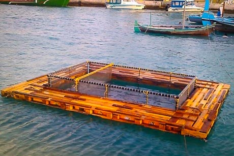 Kendhoo turtle rearing project - cage in harbour
