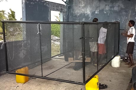 Kendhoo turtle rearing project - cage construction