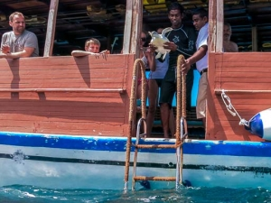 Green Turtle #44 Tzav – release from dhoni (5854) [KH 2013.10] HQ (A Busy October For Turtle Conservation At Kuda Huraa)