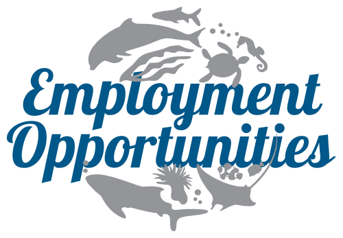Marine Savers - Employment Opportunities, Job Vacancies, Careers