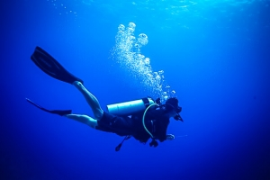 Diver (Island Diary – June)