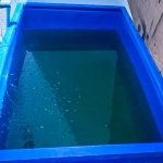 Fish Lab - Outdoor Artemia Tank