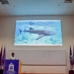 Whale Shark Workshop, Malé Maldives