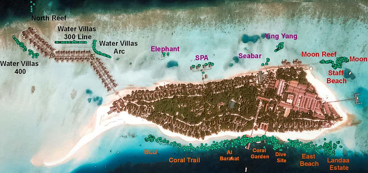 Reefscapers Coral Frames at Landaa Giraavaru