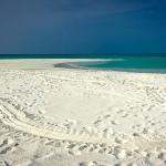 turtle tracks on beach, deserted island, Maldives