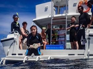 Turtle release [Seamarc Maldives Volunteers] (Marine Biology Volunteers)