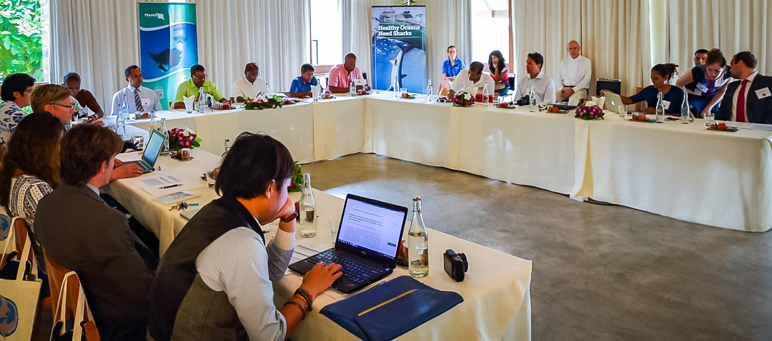 Symposium Room, Landaa Giraavaru (shark symposium, Maldives)